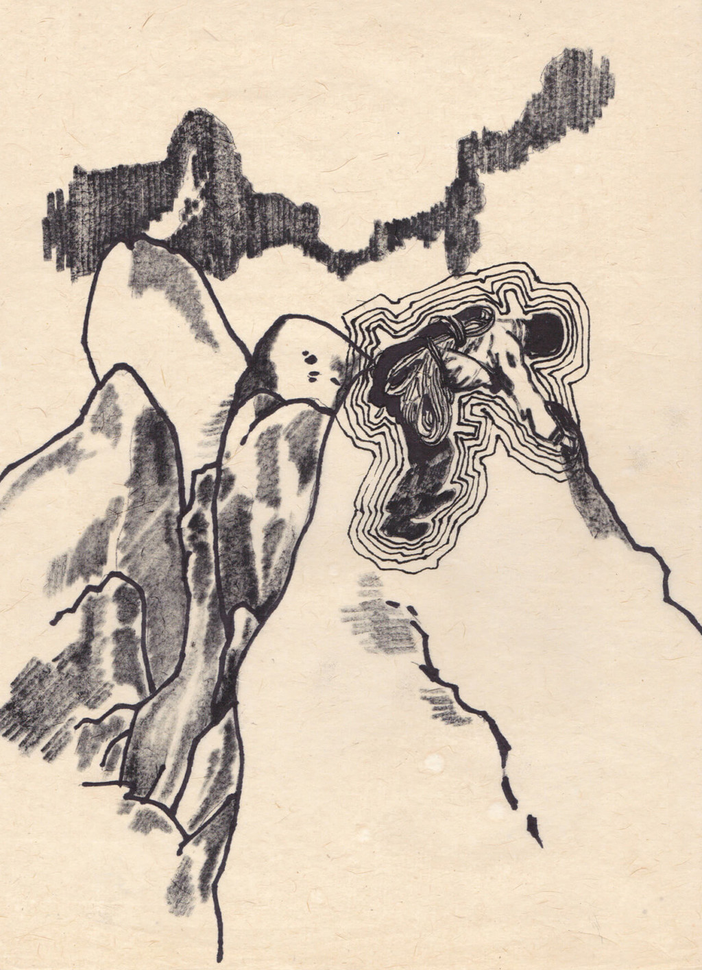 Jan Brauer Archive